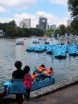 5 Bootsfahrt auf dem Chapultepec-See