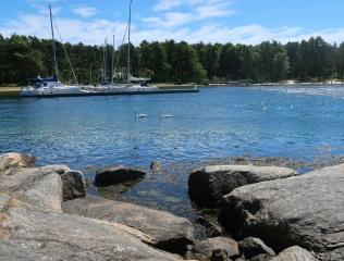 7_Schwaene im Fjord