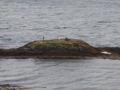Eine Insel ganz fuer mich alleine.jpg
