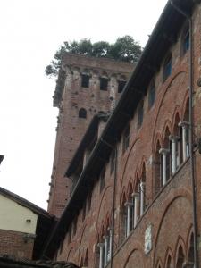 Torre Guinigi von unten