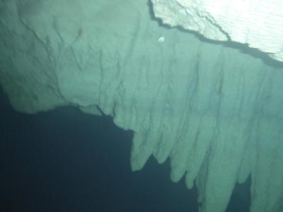 Unter Wasser.JPG