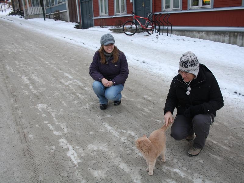 Katzenfreundinnen.jpg