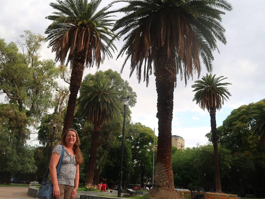 Park in Mendoza